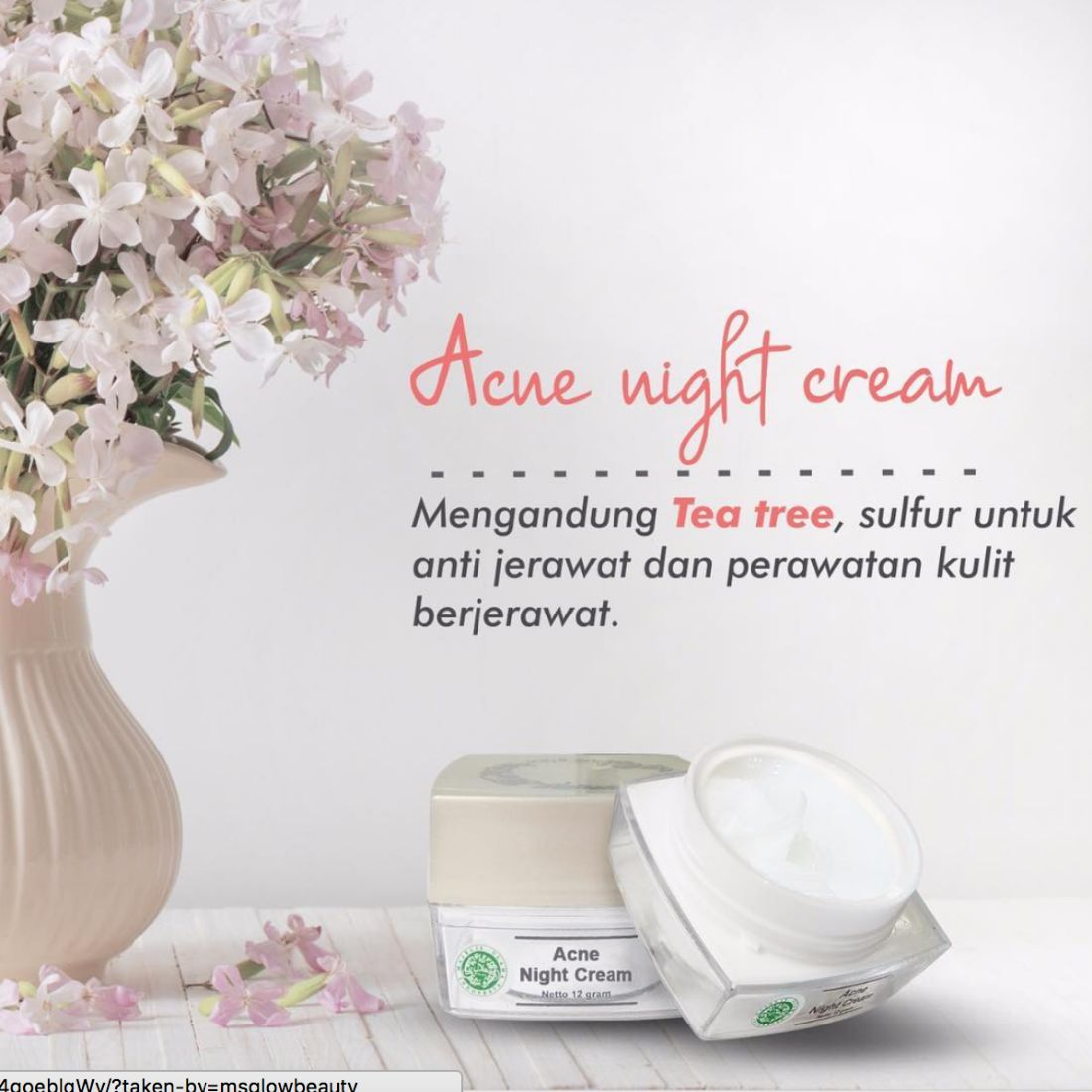 Kandungan Acne Night Cream MS Glow
